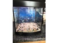 Fish tank aqua one 320