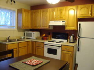 358 Somerset Street Apt 2 (Furnished Options!)