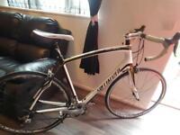 Specialized roubaix elite carbon fibre racer bike
