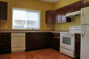 $1150 / 1br - 890ft2 -All  Utilites - Large 1 Bdrm  Cinnabar