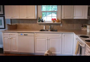 Countertops, sink and taps