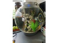 fish tank orb
