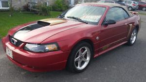 NOUVEAU  2004 Mustang GT convertible 40 ieme anniversaire