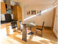 CLICK HERE STUNNING 1 BEDROOM APARTMENT IN HELION COURT - DUPLEX CANARY WHARF E14