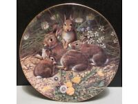 Group of 3 Royal Doulton plates, all very good condition.