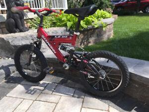 SCHWINN DS 1.6  CHILDS Bike Bicycle Oshawa  Wilson & Taunton
