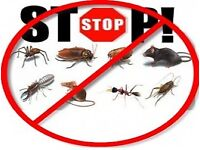 Pest Control Mice Rat Bedbugs Ants cockroaches Flies Exterminators london
