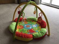 Baby Safari playmat