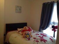 New guest bed&mattress