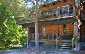 6 Bed Blue Mountain Chalet with Hot Tub #8L