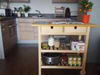 Storage Furniture (garage, kitchen, bathroom) - 50