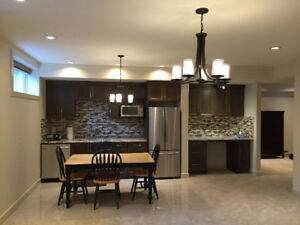 Fully furnished Basement in Aspen Wood SW
