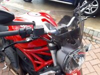 2015 Ducati Monster 821 Beautiful bike, great quality and AMAZING sound with Termignomi's