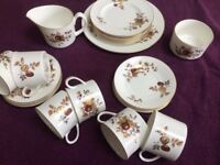 21 PIECE, VINTAGE ROYAL WORCESTER (GOLDEN HARVEST) FINE BONE CHINA IN LOVELY CONDITION