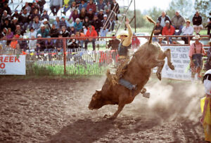 Buy tickets for strathmore stampede - chuckwagons