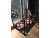 Whelping pen for sale