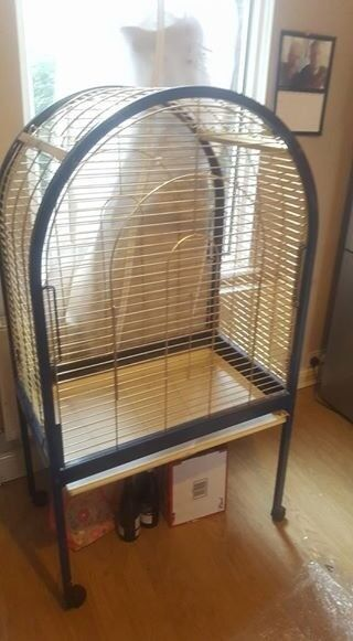 large cage on wheels
