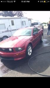 2007 FORD MUSTANG FOR SALE (mint)