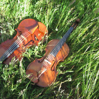 Celtic Fiddle lessons in the Glebe