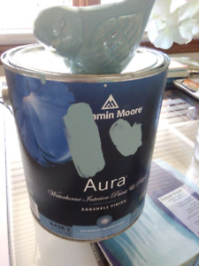 Benjamin Moore Aura - Indoor Paint