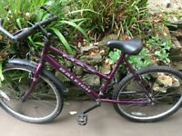 Ladies Bike - Raleigh Max Ogre 15