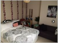 Double spacious bed rooms for rent.