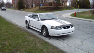 2004 Ford Mustang Édition  spéciale  40
