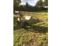 Exercise cart (horse)