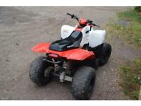 Polaris Phoenix 200 Quad Bike ATV