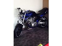 Looking for a 600cc