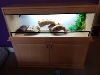 4ft Lizard/Reptile Tank/Vivarium with Heat and UV light and other accessories