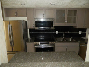 Downtown Luxury Riverview Apartment (City Kisman Park) Saskatoon