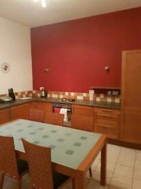 1 Bed flat to rent near Falkirk town centre