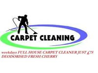 FULLY INSURED professional services spotless service, guaranteed! deep clean 100%
