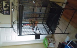 1big bird cage for sale