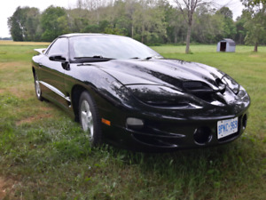 Cammed 2000 Trans Am