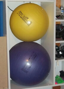 Fitter First Classic Stability Ball Chairs