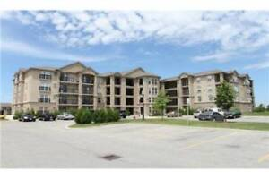 1483 MAPLE AVE, Milton, *LARGE* 1BR+Den (can be used as 2nd BR)