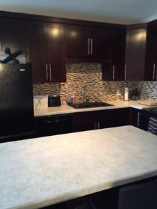 Furnished Lower Unit One Bedroom Available! (Up, Down Duplex)