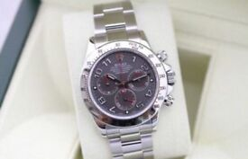 Rolex Daytona Cosmograph S/S Slate Dial SW7750