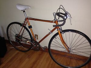 Vintage Beltek Road Bike