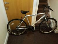 Raleigh Max Mountain bike with 26 and 19 inch frame size