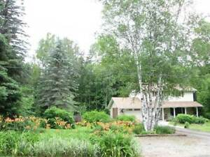 Homes for Sale in Forest Hill, Bancroft, Ontario $289,900