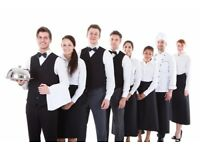 Assistant Food and Beverage Service Op Manager