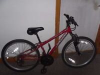 Apollo XC24 Boys Mountain Bike