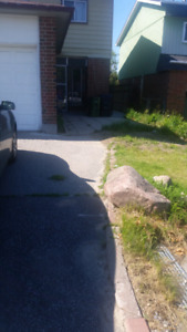 3BR Semi detached House near Malvern Mall from Sep