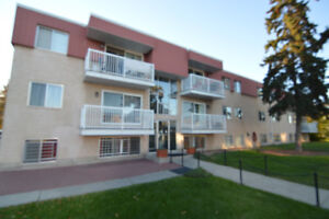 Westpoint Apts -  Large 1 BDR - Renovated Affordable Westend!