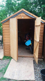 Almost new shed 6x8 with wooden floor; bargain!