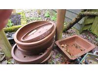 Japanese Plant /Bonsai Pot