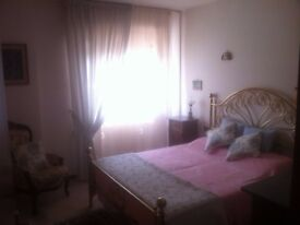 Medium size Single Room to let